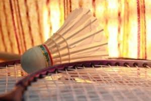 badminton-166404_1280