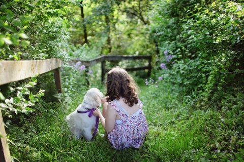Quel animal choisir pour son enfant ?